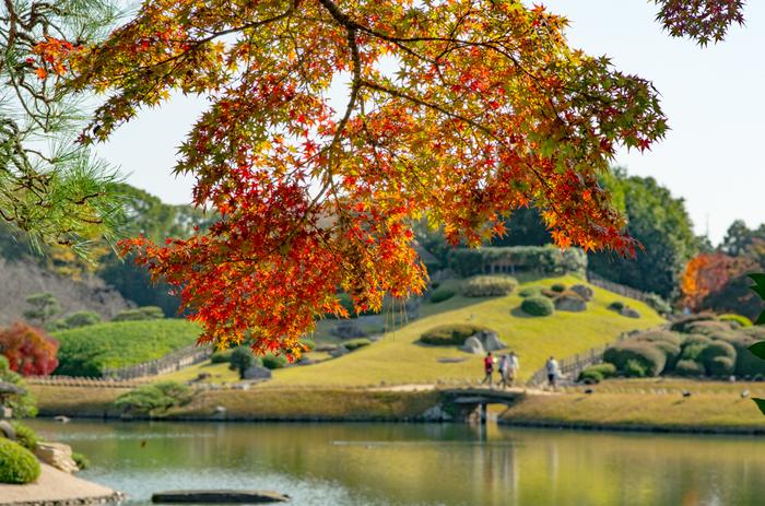 岡山後楽園のみどころは、園内随一の眺望とされる「延養亭(えんようてい)」(春と秋に特別公開)、池田綱政が好んだと伝わる「廉池軒(れんちけん)」、庭が一望できる築山「唯心山(ゆいしんざん)」等など。季節折々で咲き開く花々もみどころ。