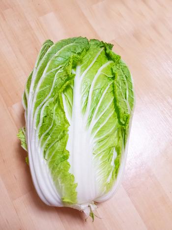 せっかく食べるなら美味しい白菜を選びたいものです。どんなポイントに気をつければ良いのでしょうか?