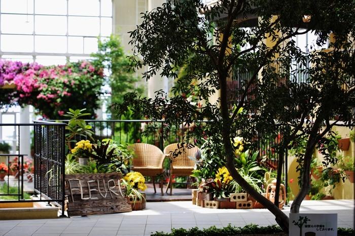 特に都会のマンションでは諦めてしまいがちのガーデニングも、ルーフバルコニーなら楽しめてしまいます。 ※マンションなどの共同住宅では、柵よりも高さのある植物を規約で禁止しているところもあるので事前に確認しましょう。