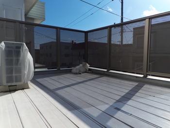 最大の魅力はやっぱりサンサンと降り注ぐ日差し。上空から遮るものがないので、日当たりが良く、お洗濯や布団干しといった家事の実用スペースとしても、この上なしです。