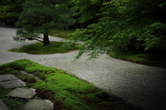 南禅寺三門の南側に位置する「天授庵」は、南禅寺の塔頭寺院の一つです。幾何学模様の石、白砂、苔を配した枯山水の「方丈前庭(東庭)」と、南北朝時代の雰囲気を今に伝える池泉回遊式の「書院南庭」の二つの庭があることで良く知られています。 【画像は、苔に縁取られた畳石が印象的な方丈前の「東庭」。】