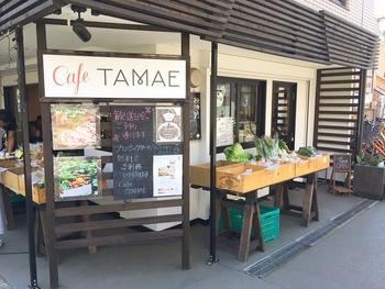麻生警察署や麻生郵便局のある道を歩くと見えてくるのが「カフェ タマエ」です。北口から徒歩13分くらいと少し歩きますが、美味しい野菜がたくさん食べられるという口コミが広がり、ランチの時間は女性客で賑わいます。  店頭には月曜日と木曜日に地元の有機野菜、果物や手ごねパンが並びます。