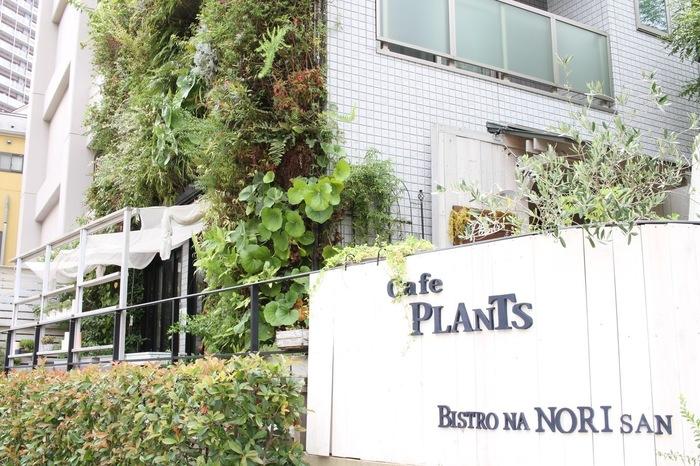 """""""プランツ""""は住宅街の中にある居心地の良いカフェです。お店は公園に面しており、緑を感じられるのも嬉しいポイント。"""