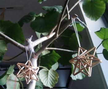 観葉植物と組み合わせても素敵ですね。
