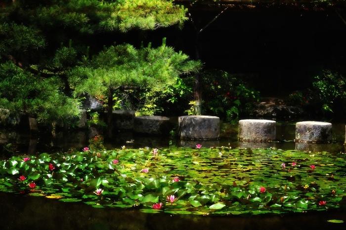 """平安神宮の「神苑」は、日本庭園を代表する傑作です。京都らしい花景色を眺めたい方、庭園に興味がある方に断然お勧めの名所です。 【画像は、秀吉により造営された三条大橋と五条大橋の橋脚を用いて架けられた、中神苑の「臥龍橋」。""""「龍の背にのって池に映る空の雲間を舞うかのような気分を味わっていただく」""""ことを意図して架橋しています。】"""
