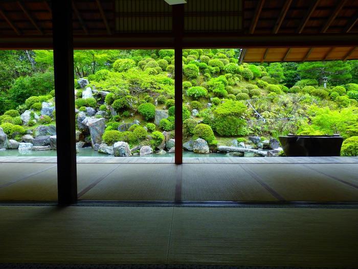 「智積院」は、アクセス抜群で、比較的観光客が少ない割に、見所が多い寺院です。夏の頃は、名勝庭園である「利休好みの庭」では、緑美しく、清々しい眺めを楽しむことができます。一人静かに散策するのにお勧めの名所です。