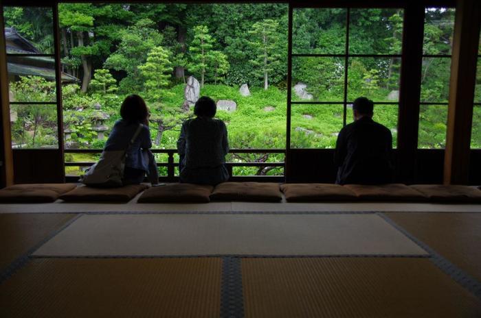 白と緑が織りなす半夏生の花景色は、両足院ならではの眺め。初夏に京都を訪れるのなら、見逃せない花の名所です。