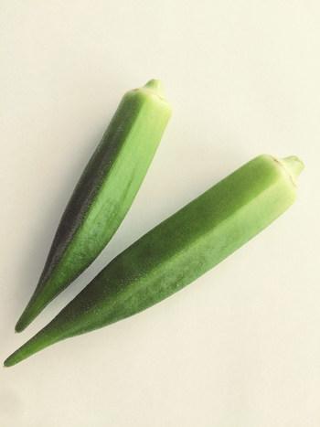 太陽をいっぱい浴びて育ったオクラは自分で育てた甲斐もあり、緑が濃くて美味しく感じますよ。オクラは原産国が南アフリカと言うだけあって暑さに強く育てやすい野菜の一つです。太陽にむかって伸びてゆくオクラの栽培、とってもワクワクしますよ!
