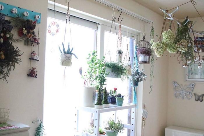 植物を育てたいけれど鉢の置き場所が足りないという場合にも、プラントハンガーはとっても有効。なおかつ、オシャレな空間演出としても優秀なアイテムです。