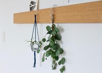 無印良品の「壁に付けられる家具」は、大きな穴ができない仕様なので、賃貸マンションでもチャレンジしやすい。マスキングテープ+両面テープなどで跡が残らないように工夫してみるのも◎ フックやピンでアレンジすれば、傘や鍵がかけられます。