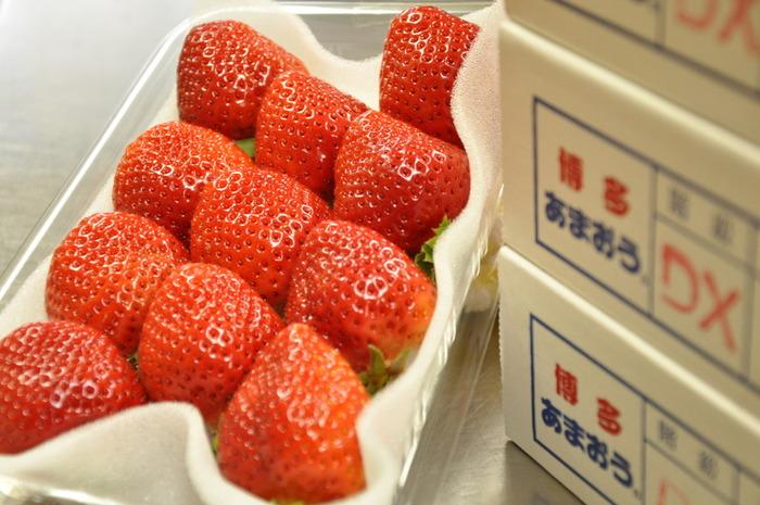 お土産といえば、和菓子や洋菓子が定番。福岡で有名なのが、大ぶりで甘味が強いイチゴ「あまおう」。福岡空港や博多駅では、ブランドイチゴ「あまおう」をつかったスイーツがたくさん販売されています。