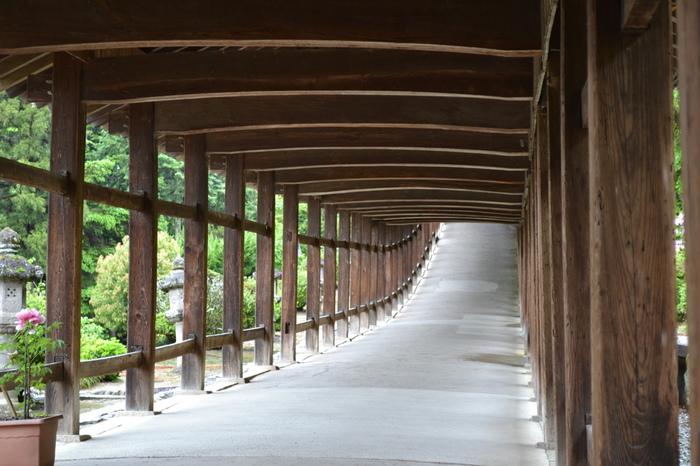 回廊の全長は360mに及び、実に壮観な眺めです。