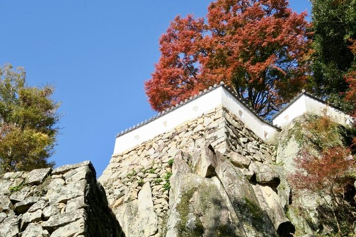 """""""難攻不落""""と呼ばれる城を象徴するのが、大手門跡の巨大な石垣。"""