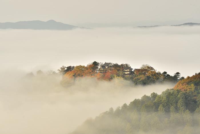 """""""天空の城""""として話題になった竹田城址(兵庫県)には、天守がありません。雲海に浮かぶ天守を拝めるのは、全国で唯一つここ備中高梁のみ。雲海に浮かぶ山城を眺められるのは、幾つかの条件が重なる時。以下を参考にして出かけてみましょう。"""