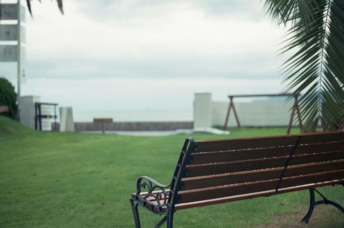 【尾道市・向島の人気カフェ「立花食堂」の庭。瀬戸内海の優しい風と風景に癒やされます。】