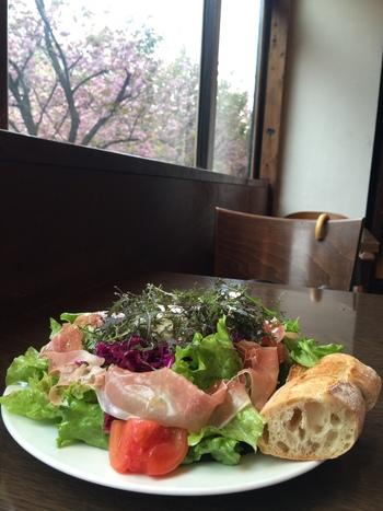 野菜たっぷりのサラダランチも人気です。 こちらは生ハムと赤キャベツマリネのサラダ。
