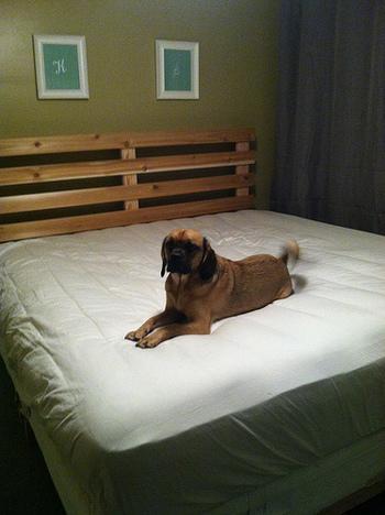 既成のものも多くありますが、サイズや色など好きなデザインにできるのでDIYですのこベッドを作るのも人気なんです。