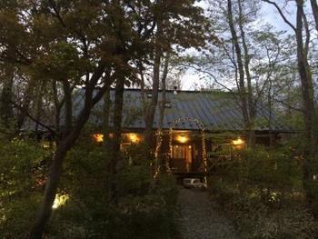 """美しい林間サイト""""メープル那須高原キャンプグランド""""。クヌギ、コナラ、カエデなどの落葉樹に囲まれ、どの季節に訪れても心に癒しを与えてくれます。 まぶしい春の新緑、爽やかで清涼な夏の木々、艶やかな紅葉、冬の雪景色までも捨てがたいキャンプ場。"""