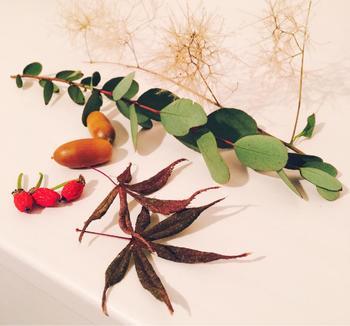 落ち葉やどんぐりなどと一緒に並べるだけでも絵になります。お皿に並べて飾っても◎