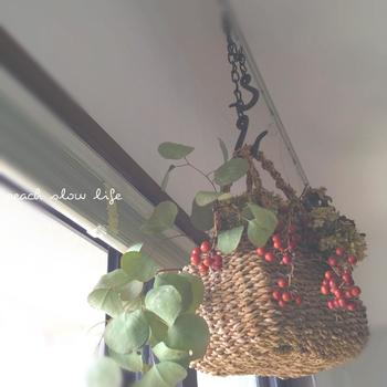サンキライは、ドライになっても実がピンと張っているので、瑞々しいまま飾れるのが魅力です。かごバックにいれて吊るして飾っても素敵。