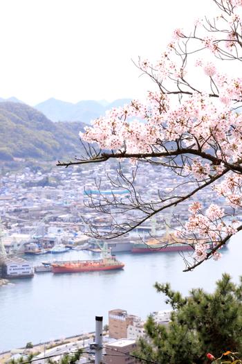 千光寺公園は、桜だけでなく、恋人の聖地・夜景100選にも選ばれている名所です。瀬戸内・尾道ならではの景色を眺めながら休憩しましょう。