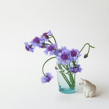 背が高い器には花を長く、背が低い器には花を短く活ける、というのが基本です。