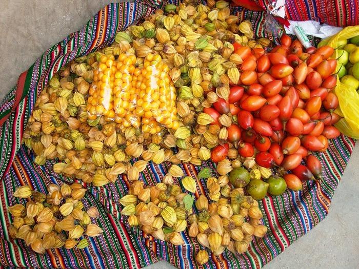 太平洋に面し、温暖な気候で滋味豊かな食材に恵まれたペルー料理は、日本人の口にとてもよく合います。その中で「セビーチェ」はペルーの文化遺産にもなっているお料理。1533年スペインに侵略されたことで、もともとあった郷土料理がいくらかアレンジされ生み出されたフュージョン料理なんだとか。今やペルーの人々が世界に誇る、国を代表するお料理になりました。