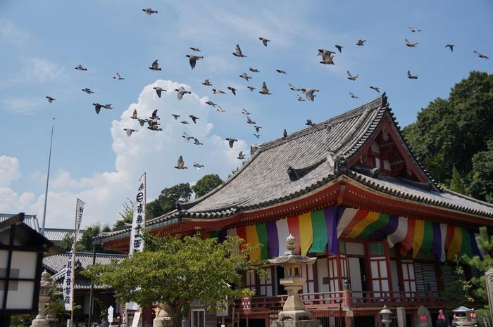 朱塗りの多宝塔と本堂が素晴らしい「浄土寺」は、飛鳥時代、聖徳太子が創建したと伝わる中国地方屈指の名刹です。