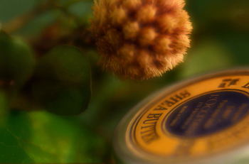 レッドラズベリーシードオイルとシアバターを使った、ふわふわな手触りで使い心地の良いクリームのレシピです。 アロマオイルも入っているので、香りも楽しめますね。