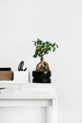 物の定位置が決められないものは、ほとんどが家の中で余分なものだと考えられます。買う時に置き場所を決められないようなものは持つ必要はありません。
