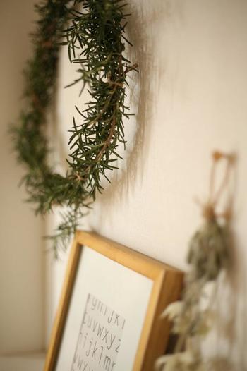 ●ローズマリー 乾燥してもさわやかな香りが長持ちするローズマリーは、玄関はもちろん室内に飾るのもおすすめです。