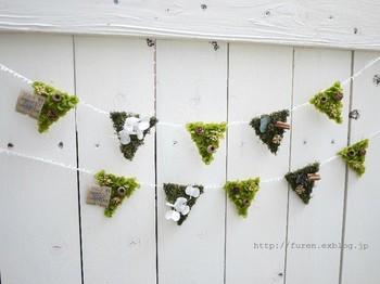 プリザーブドフラワーに、木の実やシナモンを付けてフラッグ風に!グリーンが鮮やかでキレイです。ベランダなどの屋外にピッタリ。