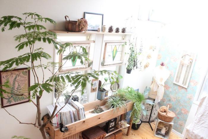 家の中にいても半分外のような。窓を閉め切っていても新鮮な空気が生まれそうな部屋。 インテリアにグリーンをたくさん使うことで、不思議な空間を演出できます。自分だけの素敵な空間を作ってみませんか?