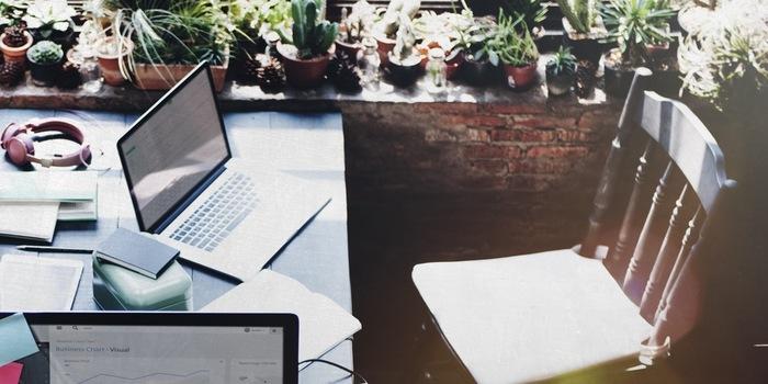 書斎などデスク周りに色々な植物を並べて。グリーンに囲まれながらの作業はよりはかどりそうですね。