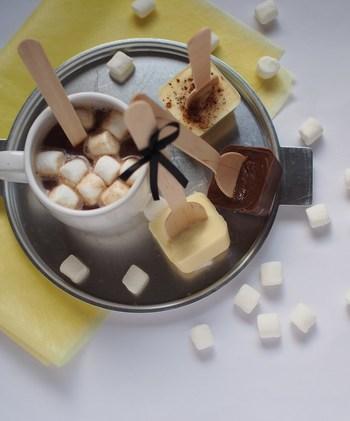 溶かしたチョコレートを製氷皿に入れて、使い捨てのスプーンをさしたら出来上がり。そのまま食べるのはもちろん、ホットミルクに入れれば簡単にホットチョコレートが楽しめます。