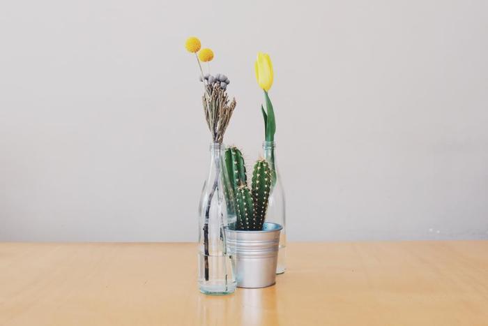 お花を生けたベースと組み合せてディスプレイするのもいいですね。ドライなイメージのサボテンと瑞々しいお花との取り合わせが新鮮。