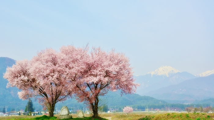 〈信州・長野〉安曇野でおしゃれなカフェや美術館、美味しいグルメを巡る女子旅案内