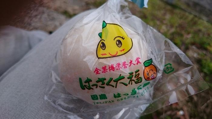 因島のお土産といえば、全国的に有名な「はっさく大福」です。