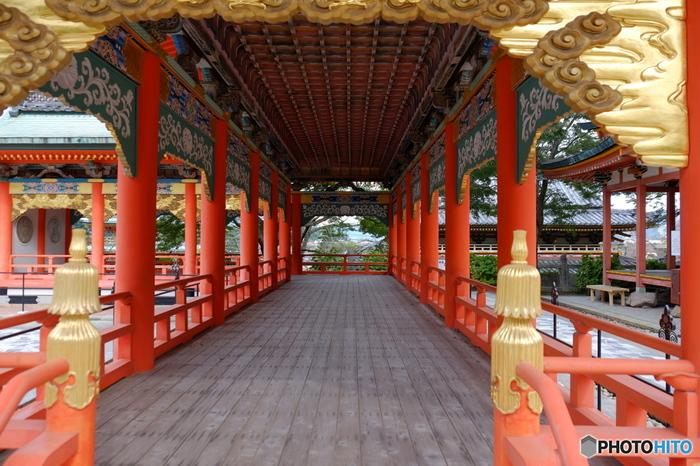 様々な建物の内、15棟が国の有形文化財に登録されています。境内の展示館には、仏教や近代美術の名品が展示されています。