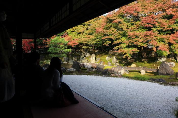【紅葉やライトアップで有名な高台寺の庭。青もみじの頃も一段と美しい。】