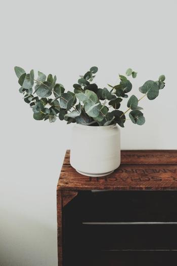 造花やフェイクグリーンに直接香水をひと吹きするのもおすすめです。