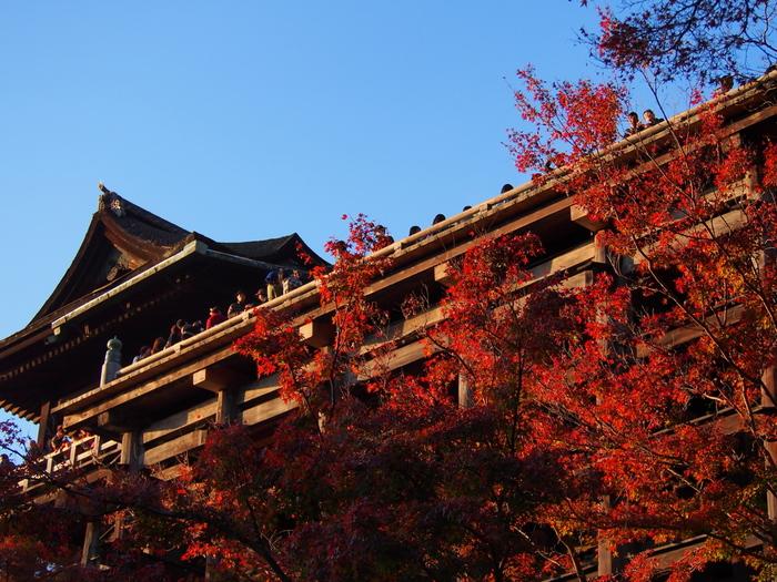 【晩秋の紅葉に染まる「清水の舞台」。下から見上げる舞台の眺めも素晴らしい。】