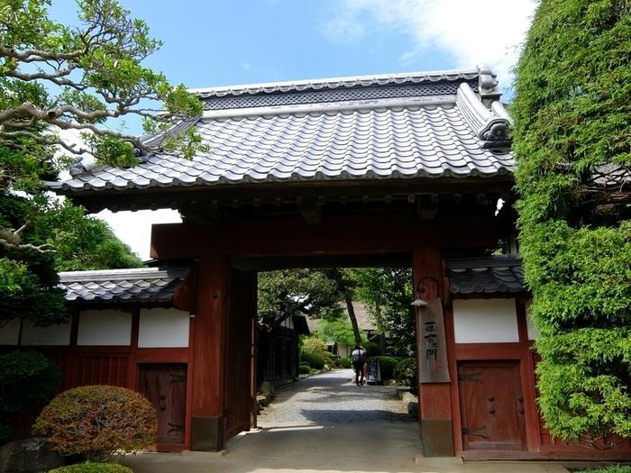 なんとも立派な門構え。「蔵日和」はこの門を入って左側にあります。つくば駅からは車で10分ほど。