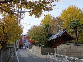 東京の小石川にある「善光寺坂」。1602年創建の歴史ある善光寺の前の道が、善光寺坂になります。
