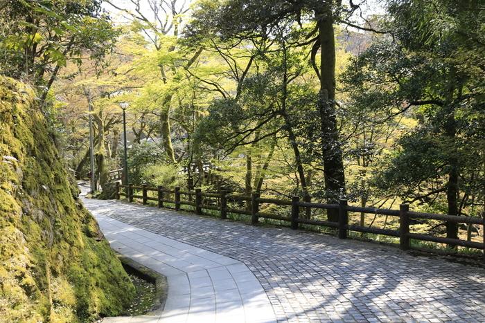 日本には、素敵な坂道がたくさんあります。海が見渡せる気持ちの良い絶景の坂や、周りに神社やお寺がある歴史ある坂もあるので、観光にもオススメです。
