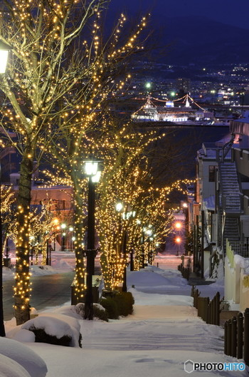 そして夏だけでなく冬の風景も素晴らしい八幡坂。函館の雪景色にイルミネーションも加わると、もうそこは別世界です。