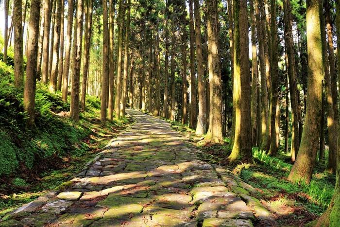 上り坂もあれば下り坂もあり、それはまるで人生の道のように奥が深いと感じることもあるでしょう。今回は、そんな世にも素敵な坂道にスポットを当ててご紹介していきます。