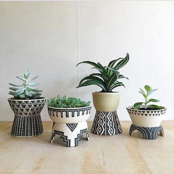 ユニークな形の多肉植物や観葉植物は、こんなユーモラスな鉢と合わせても良いですね。形違いの同じ種類の鉢で統一感を出すのがポイントです。