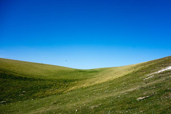 センブンシスターズ周辺は、のどかな田園風景が広がっています。絵画のように美しい、なだらかな丘陵地を散策してみるのもおすすめです。