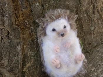 ヨーロッパでは幸運のシンボルと言われているハリネズミ。羊毛フェルトでここまでリアルに作れちゃうんですね!毛の質感に優しい目線、思わずなでてあげたくなっちゃいませんか?
